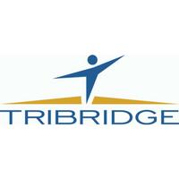 Tribridge Logo